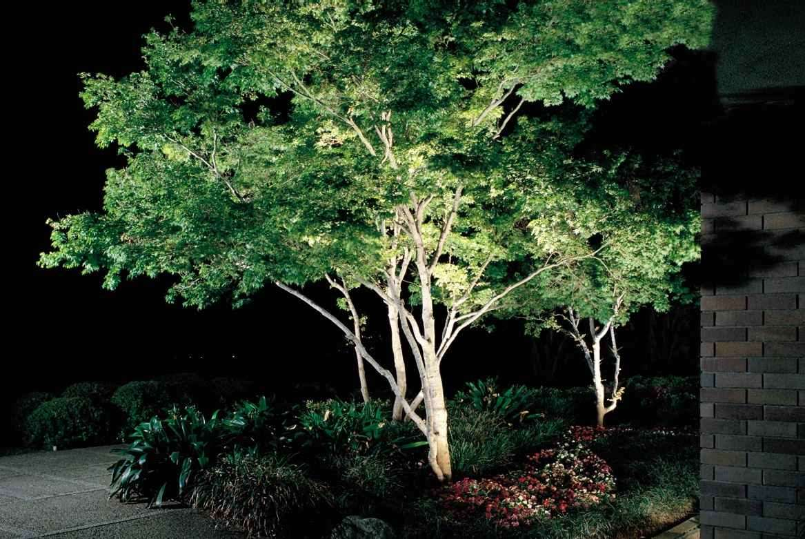 Landscape Lighting In New Jersey Cross River Design