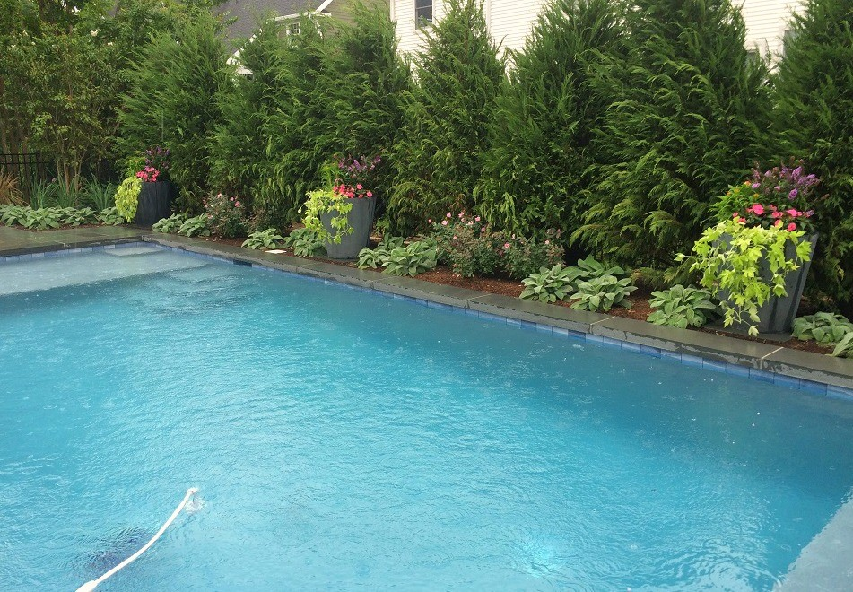 Custom pool project in monmouth beach pool blog cross for Pool design blog
